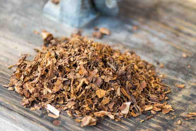 Comment fumer la pipe à tabac ?